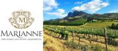 MARIANNE WINE ESTATE & GUEST HOUSE, STELLENBOSCH