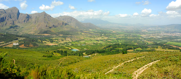 Picture of Paarl