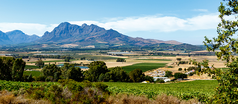 Paarl Info www.paarl-info.co.za, Accommodation and Activities in Paarl, Western Cape South Africa